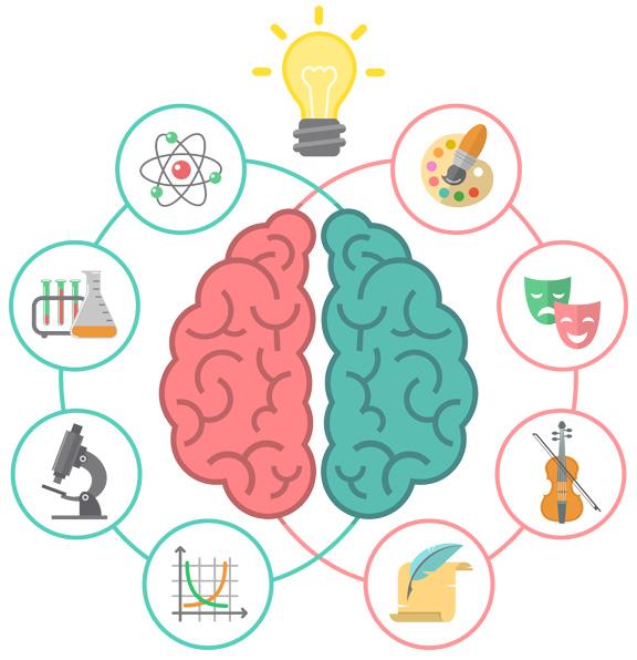 img-brain